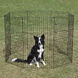 Crate Appeal Black Pet Exercise Pen