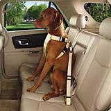 GG Ride Right Classic Dog Car Harness