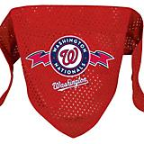 MLB Washington Nationals Mesh Dog Bandana