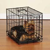 Sure Crate Folding Dog Crate