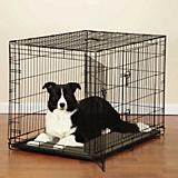 Easy Crate Double Door Dog Crate