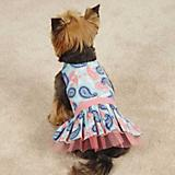 ZZ Fresh Water Paisley Dog Dress