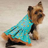 ESC Blooming Brights Dot Woven Dog Dress