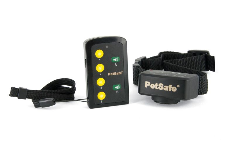 PetSafe Basic Static Remote Dog Trainer