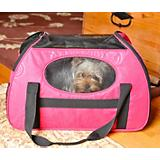 Gen7Pets Carry-Me Large Pet Carrier