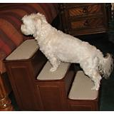 Crown Pet Designer Pet Steps with Storage