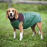 Fashion Pet Green Cord Puffy Dog Vest