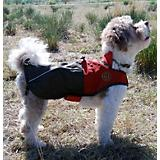 Henry and Clemmies All-Weather Dog Jacket