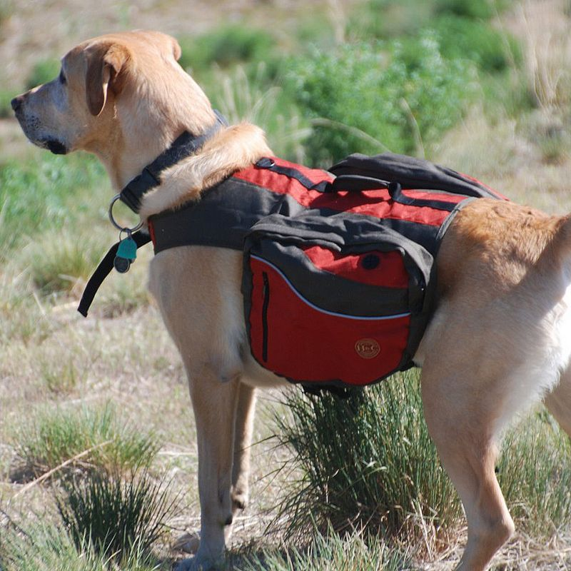 Henry and Clemmies Dog Travel Pack X-Large Red