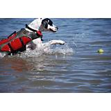 Henry and Clemmies Red Dog Lifejacket