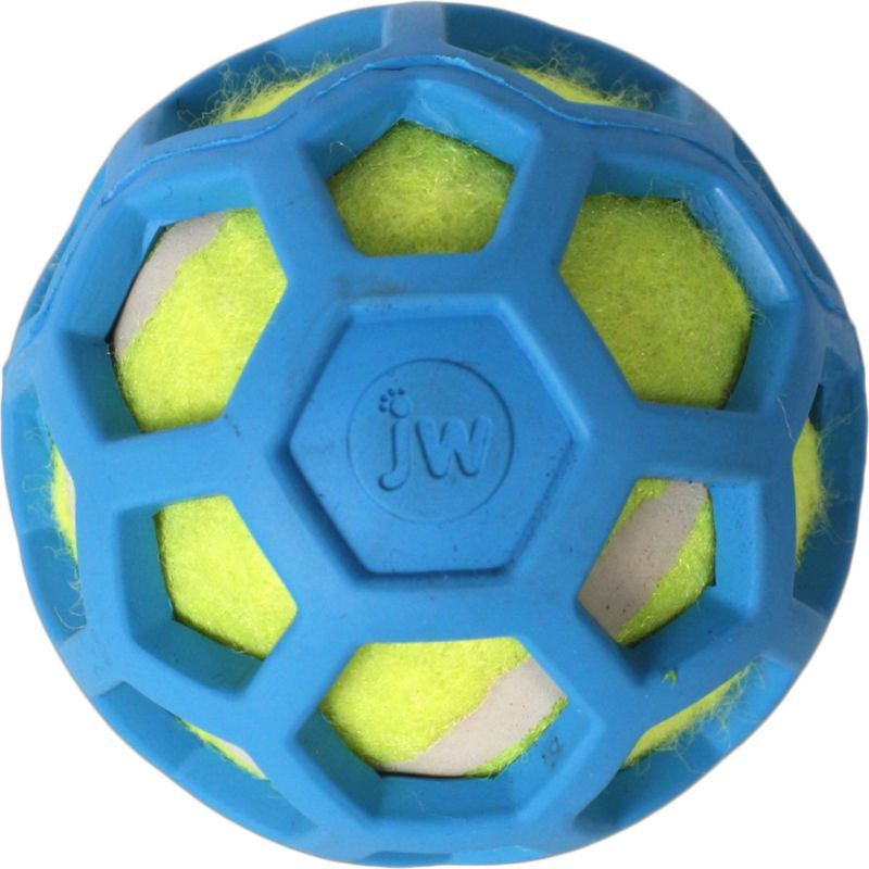 JW Pet ProTEN Hol-ee Roller Dog Toy Mini