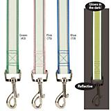 Casual Canine Glow Nylon 6Ft Dog Lead