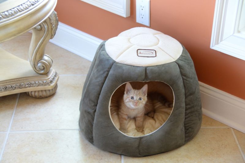 Armarkat Covered Laurel Green/Beige Cat Bed