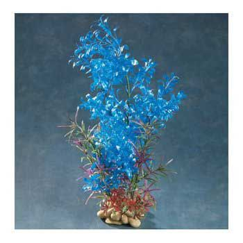 Aquatic Creations Blue Hygrophilia Plant 8 in