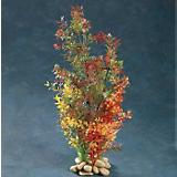 Aquatic Creations Green/Red Micro Ludwigia Plant