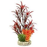 Blue Ribbon Sea Grass Bouquet Aquatic Plant