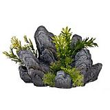 Blue Ribbon Rock Outcropping w/Green Plants