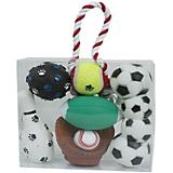 Pet Life 5-Piece Sport Themed Dog Toy Set