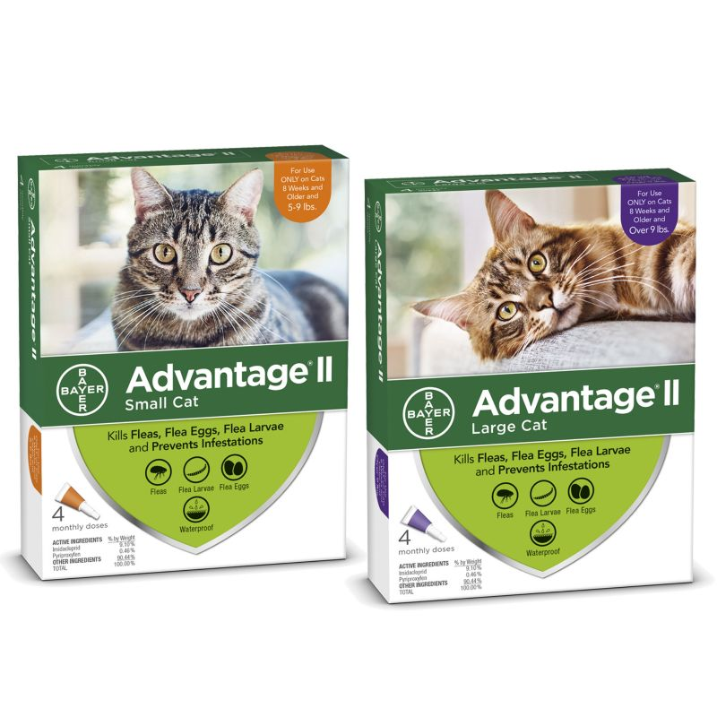Advantage II for Cats 4-Month Supply 5-9lb