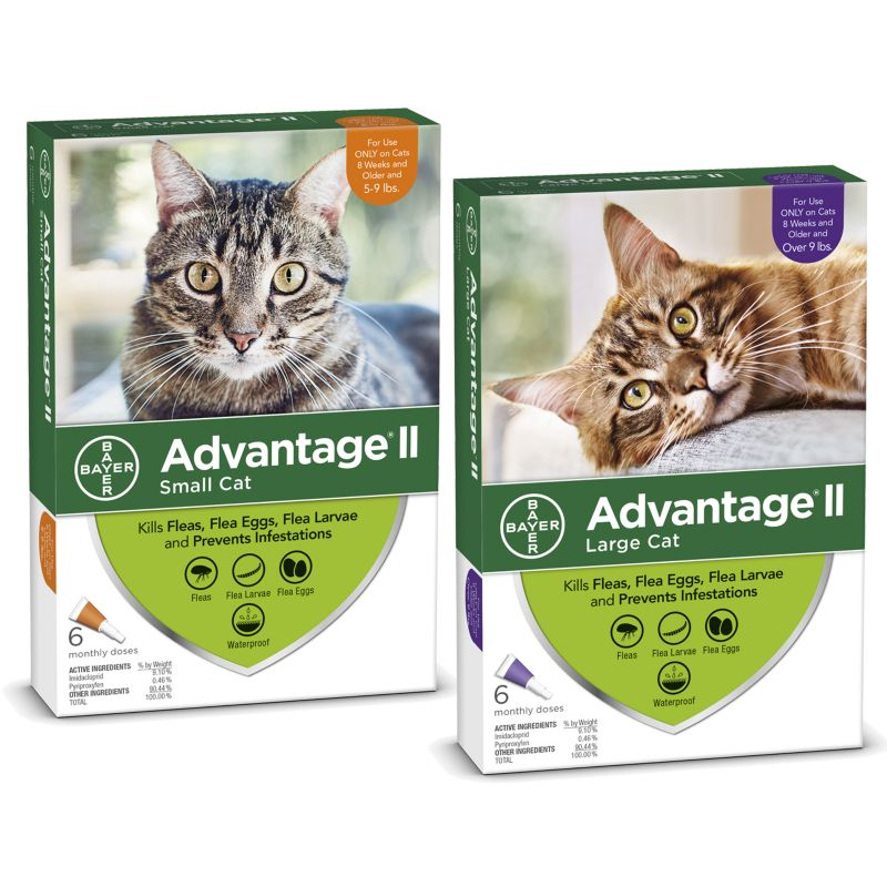 Advantage II for Cats 6-Month Supply 5-9lb