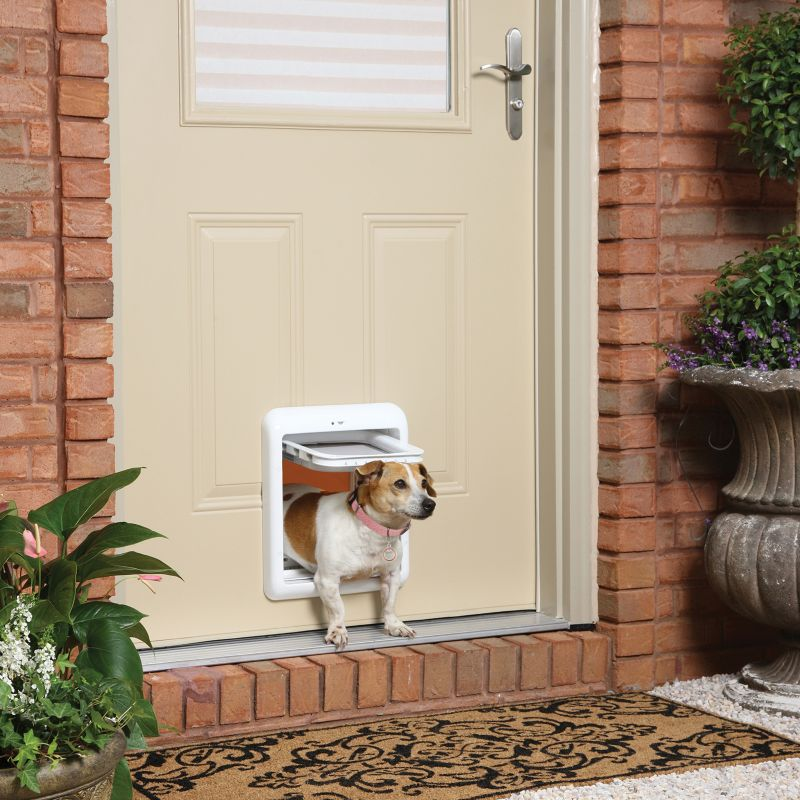 Pet Door Usa