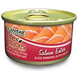 Canidae Life Stages Salmon Can Cat Food 12pk