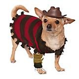 Freddy Halloween Dog Costume