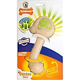 Nylabone Hedgehog Dental Dog Chew
