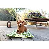 Jax and Bones Labyrinth Outdoor Dog Mat