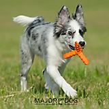 MajorDog Rubber Whirl Fetch Dog Toy