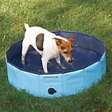 Cool Pup Dog Pool