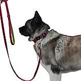 Hurtta Explorer Dog Leash 6ft