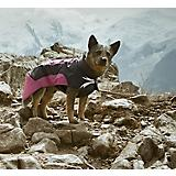 Hurtta Ultimate Warmer Dog Coat