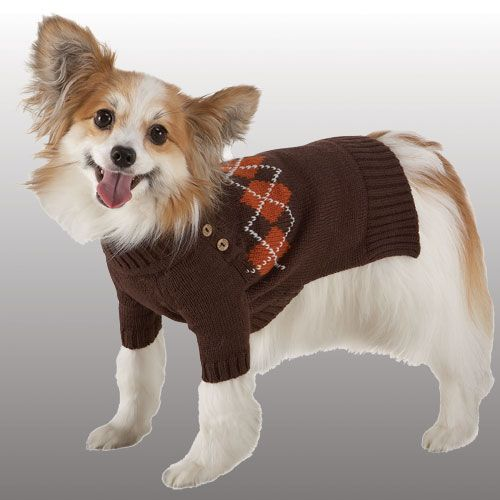 Luxury Sweater Brown With Argyle 8 Inch