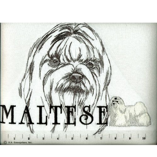 Classic Breed T Shirt Maltese Medium