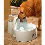 Drinkwell Big Dog Pet Water Fountain