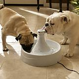 Drinkwell 360 Pet Water Fountain