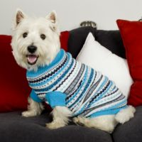 Paw Appeal Turtleneck Dog Sweater