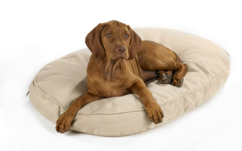 Bowsers Hemp Dog Bed Small