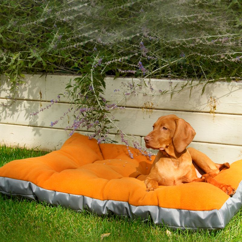 Bowsers Eco-Futon Dog Bed Small Rainforest
