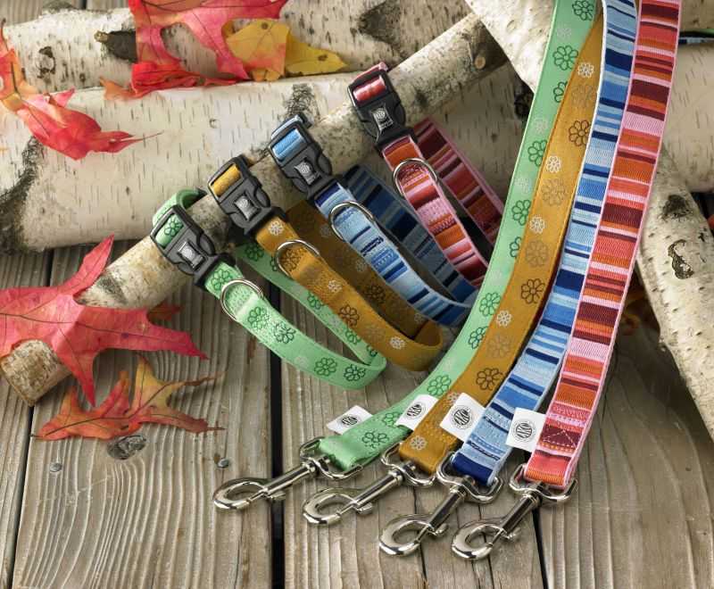 Akc Eco-Friendly Dog Collar Medium Stripe Red