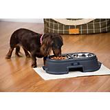 Recycled Plastic Healthy Pet Elevated Feeder