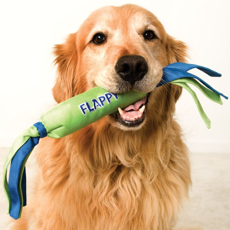 Flappy Ruffy Dog Toy Medium