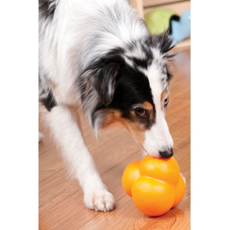 Atomic Treat Ball Dog Toy Medium