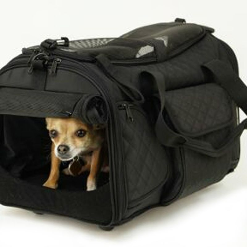 Deluxe Rolling Pet Carrier