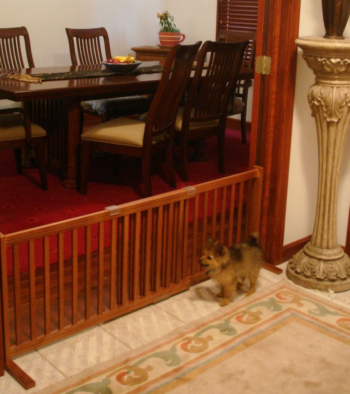 Freestanding Pet Gate 20 Inch Small Cherry Dog Safety
