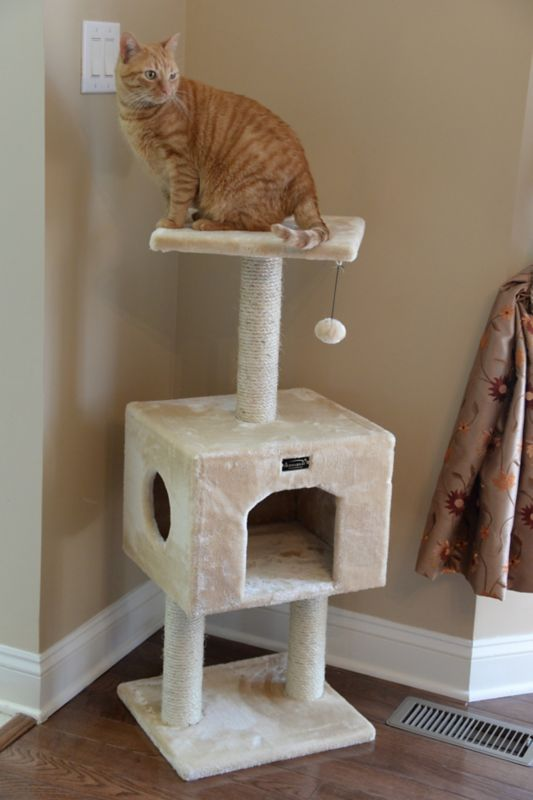 42 Inch Cat Tree House