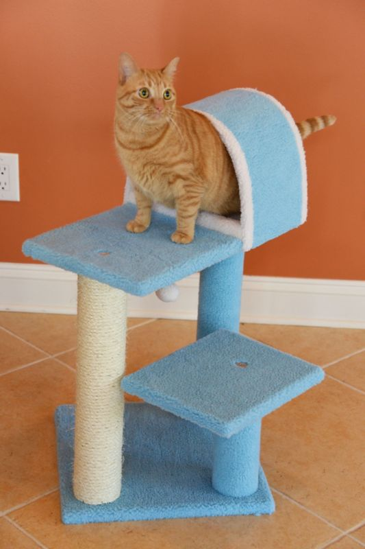 30 Inch Cat Tower with Scratcher