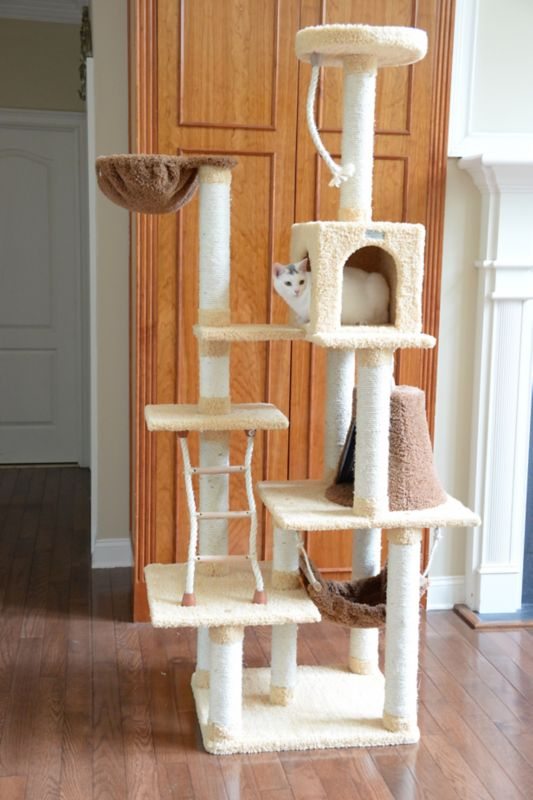 78 inch cat jungle gym with hammock and rope - Cat Jungle Gym