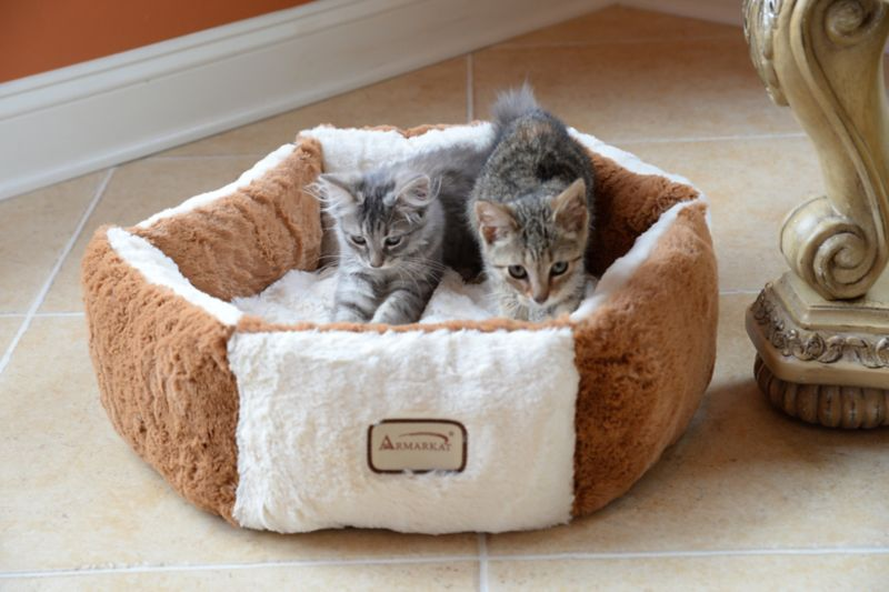 Armarkat C02NZS/MB Plush Round Pet Bed
